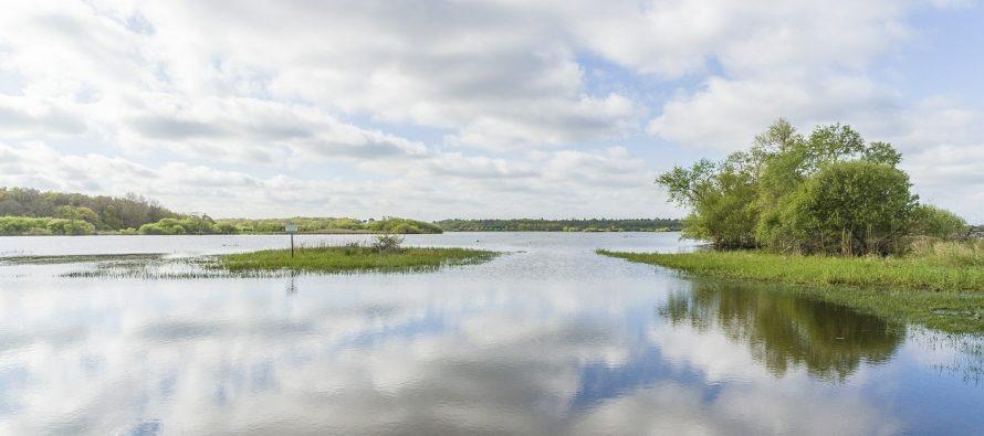Pêche : Le milieu aquatique ligérien